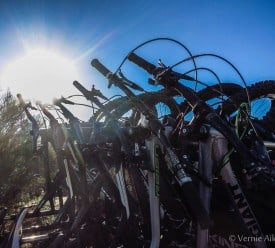 Tucson Mountain Bike Rentals