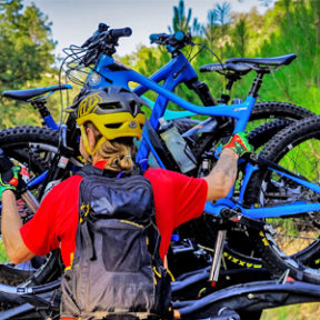 BikeRentals